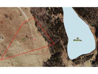 0  Red Fox Lane  , Waynesville, MO 65583 (#14067172) :: Walker Real Estate Team