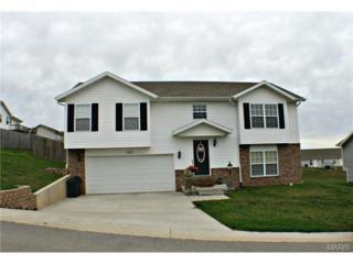 100  Mary Catherine  , Waynesville, MO 65583 (#15020565) :: Walker Real Estate Team