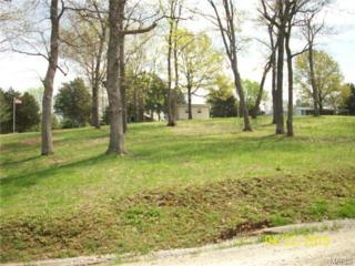 14941  Lakeview Drive  , Ste Genevieve, MO 63670 (#15022393) :: Gerard Realty Group
