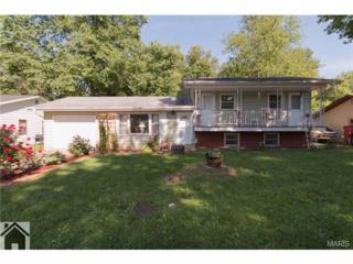 111  Hull Drive  , Waynesville, MO 65583 (#15028427) :: Walker Real Estate Team