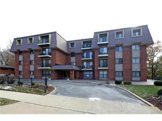 450 W Adams Avenue  28, Kirkwood, MO 63122 (#14064416) :: Gerard Realty Group