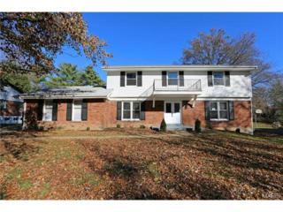 14477  Callaway Court  , Chesterfield, MO 63017 (#14064523) :: Gerard Realty Group