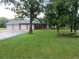 19820  Stamper Lane  , Waynesville, MO 65583 (#14055696) :: Walker Real Estate Team