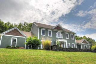 20  Maple Lane  , Clinton, NY 12514 (MLS #336231) :: Carrington Real Estate Services