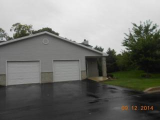 3446 W Sycamore St  , Franklin, WI 53132 (#1386776) :: Realty Executives Integrity