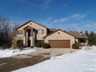 14150 W North Oak Ct  , New Berlin, WI 53151 (#1401140) :: Realty Executives Integrity