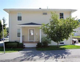 10  Lunda Street  4, Waltham, MA 02453 (MLS #71736181) :: Vanguard Realty
