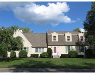 57  Colonial Dr  , Leominster, MA 01453 (MLS #71736186) :: Exit Realty