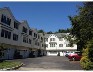 Waltham, MA 02453 :: Vanguard Realty