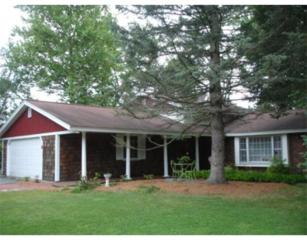 1  Burning Tree Ln  , Chelmsford, MA 01824 (MLS #71742749) :: Exit Realty