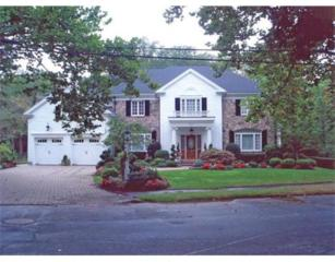 69  Princeton Road  , Brookline, MA 02467 (MLS #71755634) :: Vanguard Realty