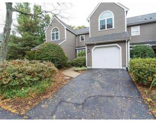 61  Bishops Forest Dr  61, Waltham, MA 02452 (MLS #71758754) :: Vanguard Realty