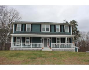 12  Teaberry Cir  , Plymouth, MA 02360 (MLS #71776724) :: ALANTE Real Estate