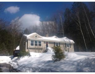 29  Forest Dr  , Holland, MA 01521 (MLS #71795095) :: Seth Campbell Realty Group - Keller Williams