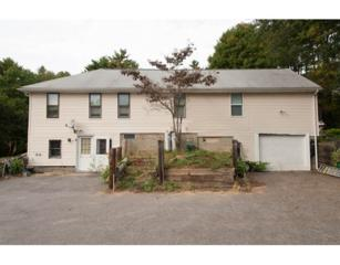 24  Birch Rd  , Norfolk, MA 02056 (MLS #71796807) :: William Raveis the Dolores Person Group