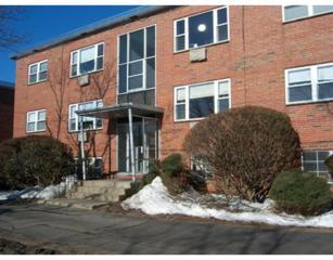 1105  Lexington St  10-2, Waltham, MA 02452 (MLS #71805967) :: Vanguard Realty