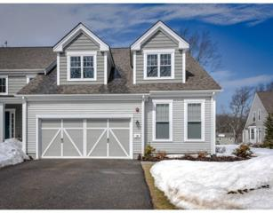 18  Allison Way  18, Natick, MA 01760 (MLS #71808027) :: Seth Campbell Realty Group - Keller Williams