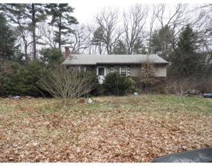 27  Jacquith Rd  , Wilmington, MA 01887 (MLS #71817315) :: Exit Realty