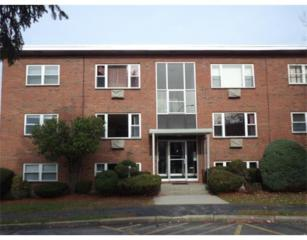 1105  Lexington Street  6-4, Waltham, MA 02452 (MLS #71765225) :: Vanguard Realty