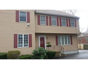 60  Brentwood Ave  60, Newton, MA 02459 (MLS #71819469) :: Vanguard Realty