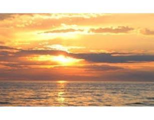 538  Shore Road  3, Truro, MA 02652 (MLS #71791592) :: ALANTE Real Estate