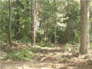 0  Reeves Ct  53, Mobile, AL 36695 (MLS #509342) :: The MobileMLS
