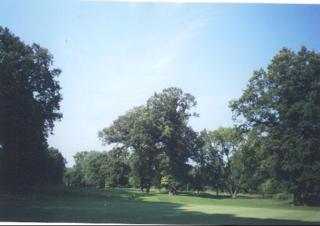 259  Maple Lot 2 Street  , Wilmette, IL 60091 (MLS #08410648) :: Jameson Sotheby's International Realty
