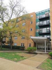 2501 W Bryn Mawr Avenue  402, Chicago, IL 60659 (MLS #08620536) :: Jameson Sotheby's International Realty