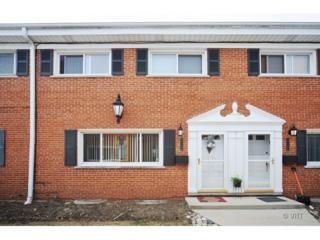 2110  St Johns Avenue  B, Highland Park, IL 60035 (MLS #08637403) :: Jameson Sotheby's International Realty