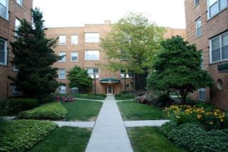 4929 N Wolcott Avenue  1A, Chicago, IL 60640 (MLS #08652783) :: Jameson Sotheby's International Realty