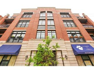 2221 W Belmont Avenue  401, Chicago, IL 60618 (MLS #08656838) :: Jameson Sotheby's International Realty