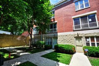 712 S Western Avenue  D, Chicago, IL 60612 (MLS #08665677) :: Jameson Sotheby's International Realty