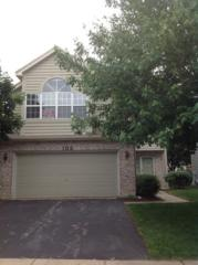 106  Townsend Circle  106, Naperville, IL 60565 (MLS #08680604) :: The Jacobs Group
