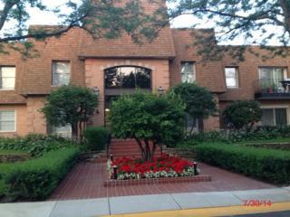 1250  Park Avenue  401, Highland Park, IL 60035 (MLS #08704124) :: Jameson Sotheby's International Realty