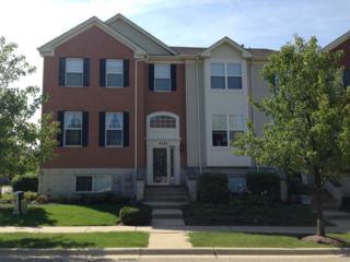 4185  Milford Lane  4185, Aurora, IL 60504 (MLS #08713664) :: The Jacobs Group