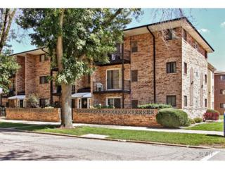 6005 N Neola Avenue  2A, Chicago, IL 60631 (MLS #08721008) :: Organic Realty