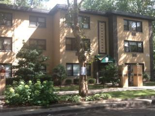 1846 W Birchwood Avenue  2, Chicago, IL 60626 (MLS #08721920) :: Jameson Sotheby's International Realty