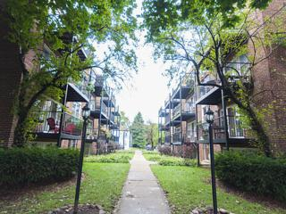 2624 W Catalpa Avenue  14, Chicago, IL 60625 (MLS #08726476) :: Jameson Sotheby's International Realty