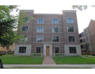 1319  Maple Avenue  2SW, Evanston, IL 60201 (MLS #08726967) :: Jameson Sotheby's International Realty