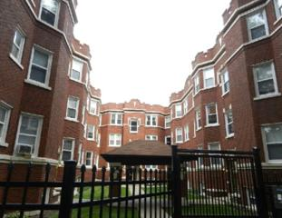 6415 N Greenview Avenue  1E, Chicago, IL 60626 (MLS #08727279) :: Jameson Sotheby's International Realty