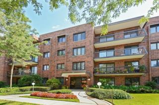 9221  Drake Avenue  209N, Evanston, IL 60203 (MLS #08732550) :: Jameson Sotheby's International Realty