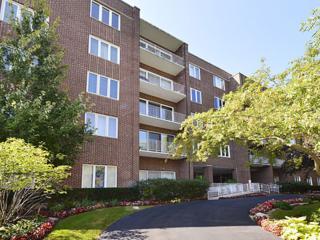 1500  Oak Avenue  3-E, Evanston, IL 60201 (MLS #08732757) :: Jameson Sotheby's International Realty