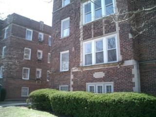 1228  Elmwood Avenue  3W, Evanston, IL 60202 (MLS #08733189) :: Jameson Sotheby's International Realty