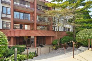 2046  St Johns Avenue  3E, Highland Park, IL 60035 (MLS #08734421) :: Jameson Sotheby's International Realty
