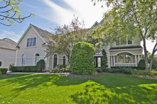 2463  Fawn Lake Circle  , Naperville, IL 60564 (MLS #08739145) :: The Lifestyles By Joe Team