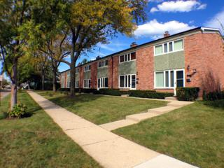 369  Temple Avenue  5, Highland Park, IL 60035 (MLS #08745525) :: Jameson Sotheby's International Realty