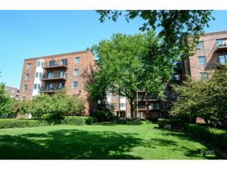 1503  Oak Avenue  213, Evanston, IL 60201 (MLS #08748080) :: Jameson Sotheby's International Realty