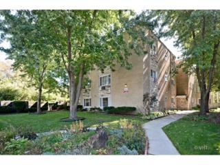 602  Mulford Street  1A, Evanston, IL 60202 (MLS #08750407) :: Jameson Sotheby's International Realty