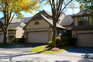 1216  Hobson Oaks Court  , Naperville, IL 60540 (MLS #08751620) :: The Jacobs Group
