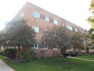 349  Custer Avenue  2, Evanston, IL 60202 (MLS #08752139) :: Jameson Sotheby's International Realty